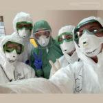 Как подготовить клинику к борьбе с пандемией? Опыт петербуржцев