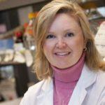 Клетки рака, как медведи, впадают в спячку, чтобы пережить химиотерапию